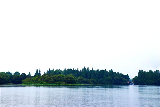 木材商家注意:北美港口拥堵加剧蔓延